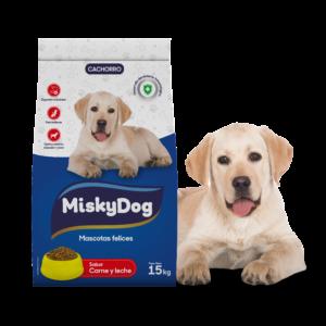 MiskyDog